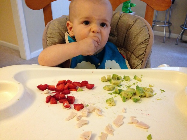 Feeding Our Paleo Baby: A 12-Month Update and a Recipe for Paleo Baby Popsicles