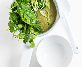 heinstirred wrote a new post, Thai Coconut Broccoli Soup, on the site heinstirred