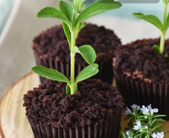 Chocolate Dirt Cupcakes (Paula Deen)