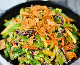 Thai Veggie Slaw with Peanut Dressing and Crispy Wontons