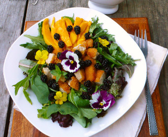 Mango Chicken Mulberry Salad