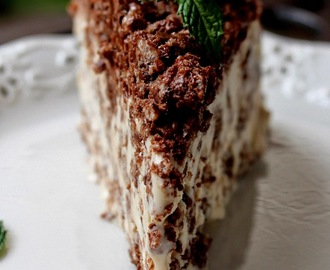 Nutella Crunch Ice Cream Cake