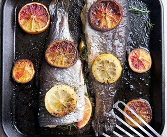 Herb & Citrus Roasted Trout