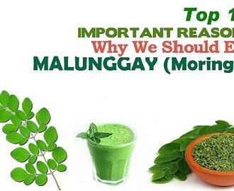 Top 10 Health Benefits of Malunggay (Moringa)