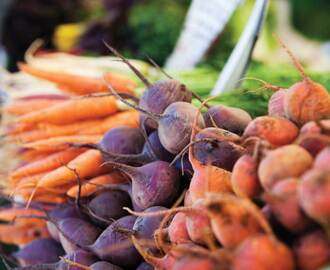 How to Prepare Seasonal Root Vegetables (+ 2 Recipes)