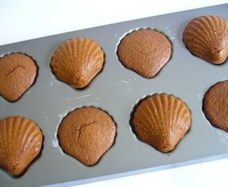 Chocolate Sponge Shells
