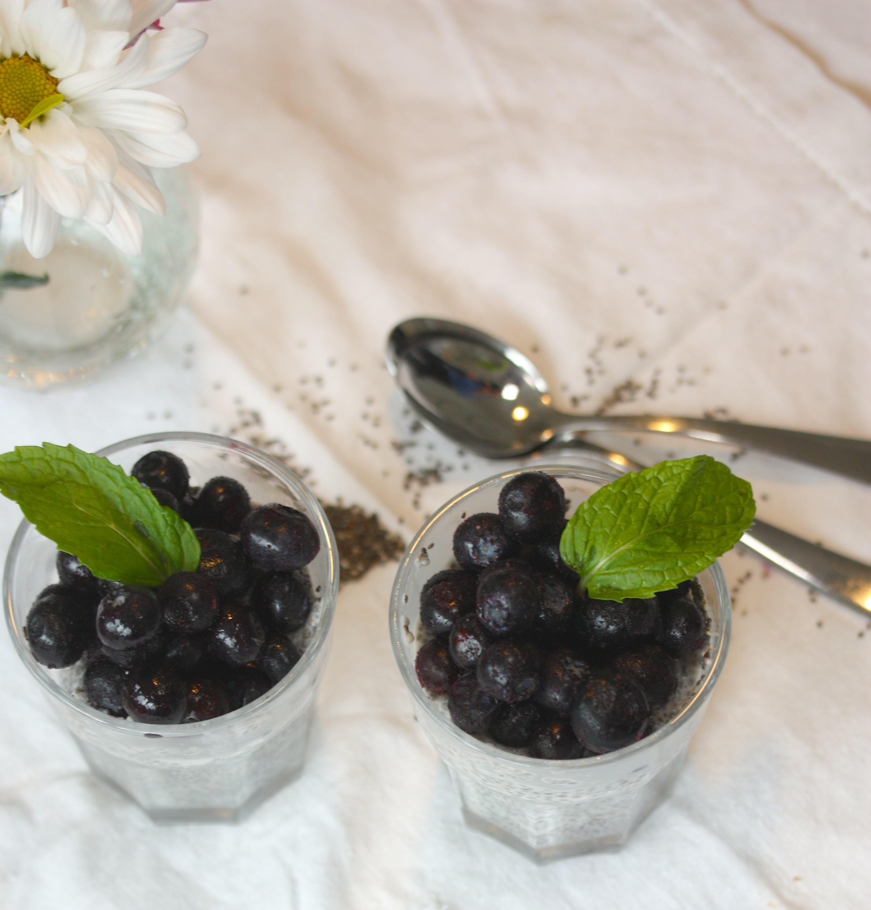 Snack Hacks: Chia Pudding with Blueberries