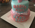 Gender Reveal Party .... Oscar