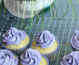 Simple vanilla cupcakes with vanilla buttercream frosting