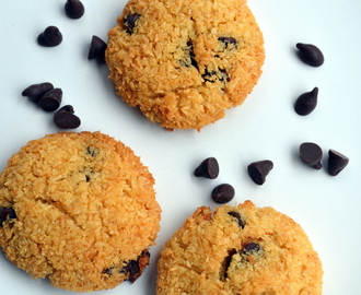 Gluten free Chocolate chip coconut cookies