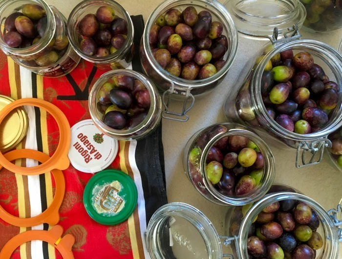 How To Cure Your Own Olives