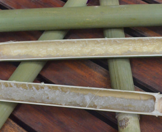 Tinubong – The Great Kakanin in Bamboo from Ilocos