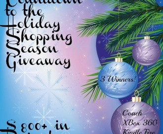 Countdown to the Holidays Giveaway