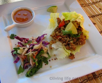 Asian Turkey And Quinoa Lettuce Wraps And Apple Fennel Slaw