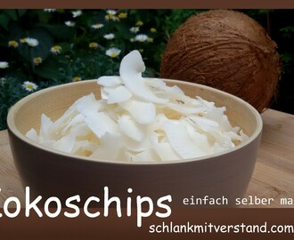Kokoschips selber machen low carb vegan