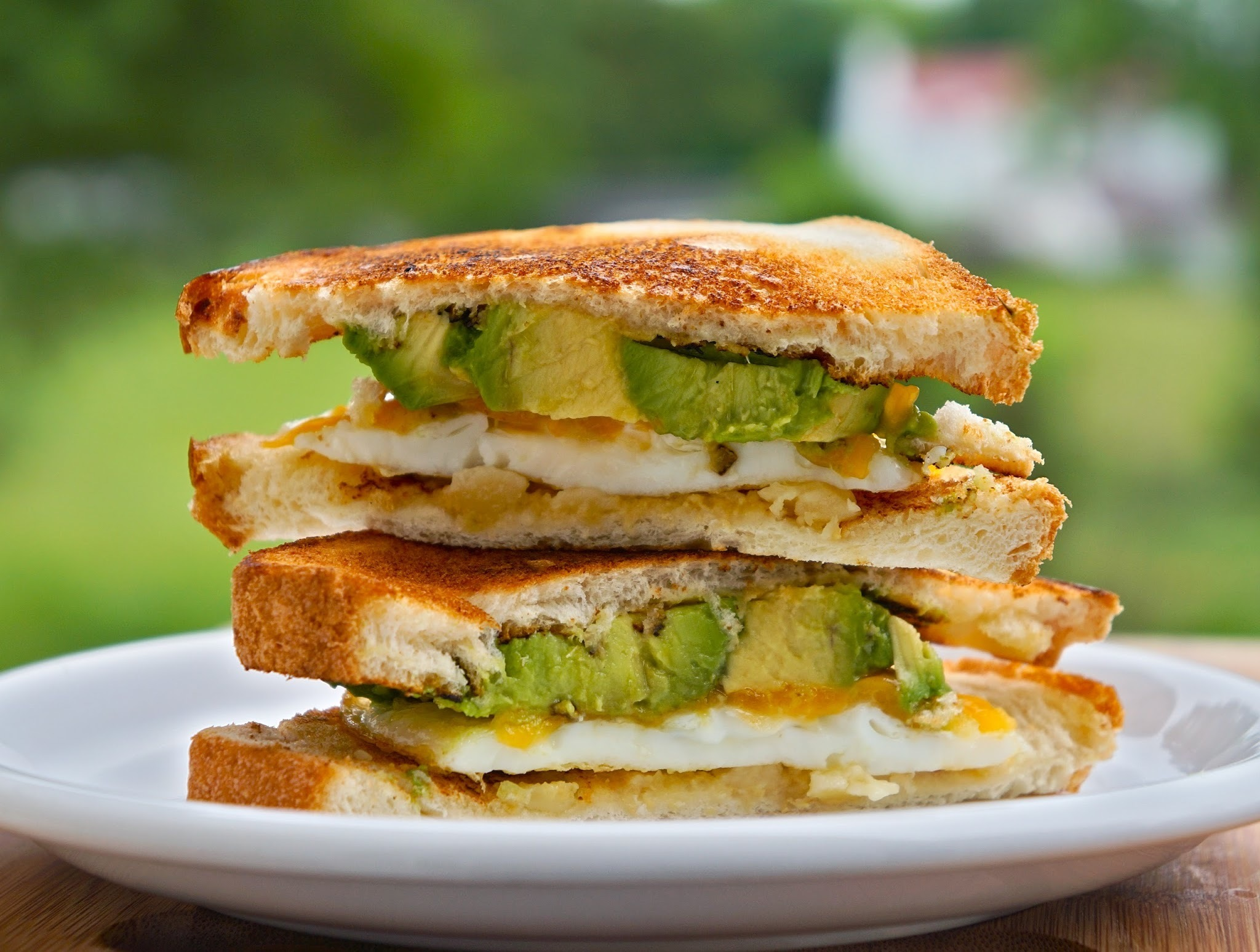 fried egg cheese avocado sandwich
