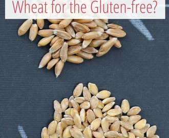Einkorn: A Wheat for the Gluten-free?