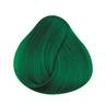 Directions Hair Colour Apple Green