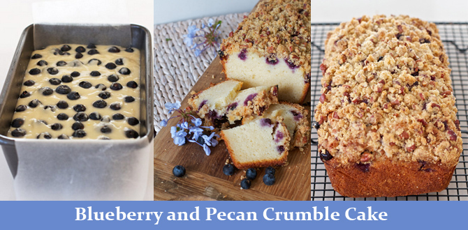 Blueberry and Pecan Crumble Cake