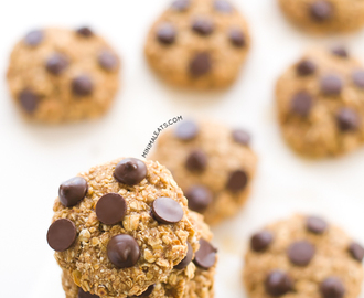 Vegan Gluten Free Chocolate Chip Oatmeal Cookies