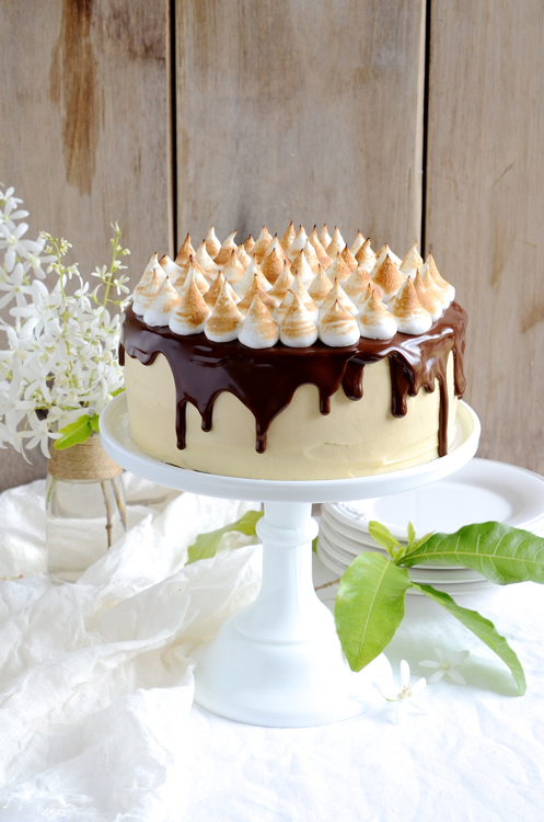 dianne wrote a new post, S'mores Chocolate cake with Caramel mascarpone frosting, on the site bibbyskitchenat36.com