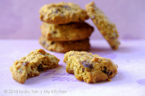 Raisin Oatmeal Cookie [Y3K Recipes Issue No. 52]