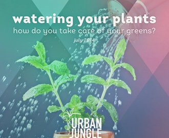 "Wasser marsch oder ""watering your plants - how do you take care of your greens?"""