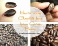 How to make homemade Chocolate bar from Cacao Beans?