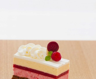 Harmonia: Red berry entremets