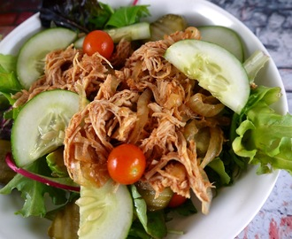 Paleo Crock Pot Pulled Chicken