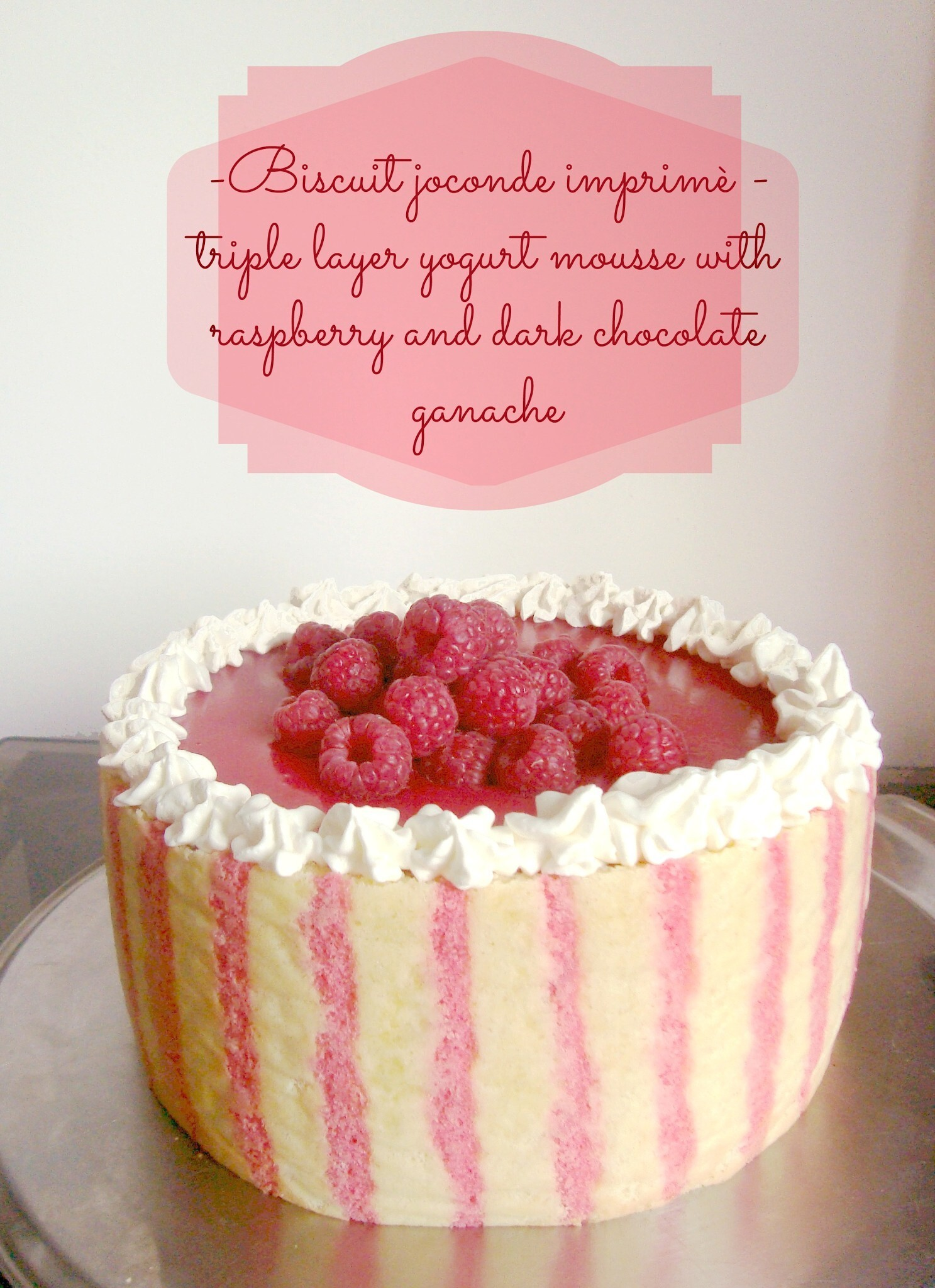 Trionfo di lamponi - Biscuit joconde imprimè, triple layer mousse cake with raspberry and chocolate!