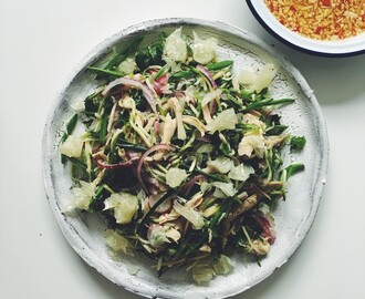 Chicken Salad with Sugar Snap Peas, Pomelo, Mint and Red Onion Pickle