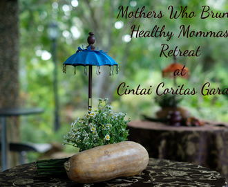Healthy Mommas Retreat on Mothers Who Brunch's First Anniversary