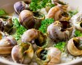 Celebrate National Escargot Day with Escargots a la Bourguignonne & a little history ~Foodimentary & Epicurious