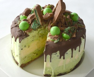 Easy Peppermint Choc Chip Ice-Cream Cake