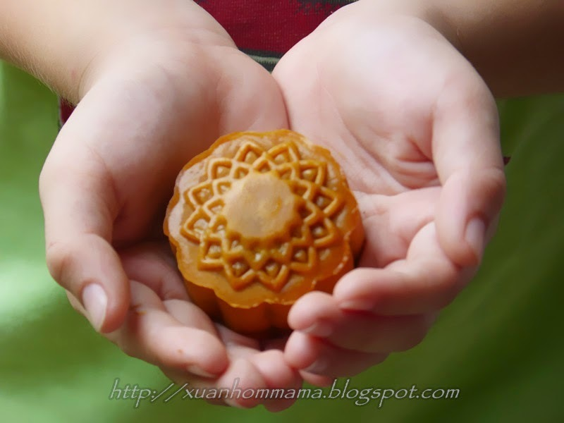 热带月饼 (Tropical Goodies Moon Cake)