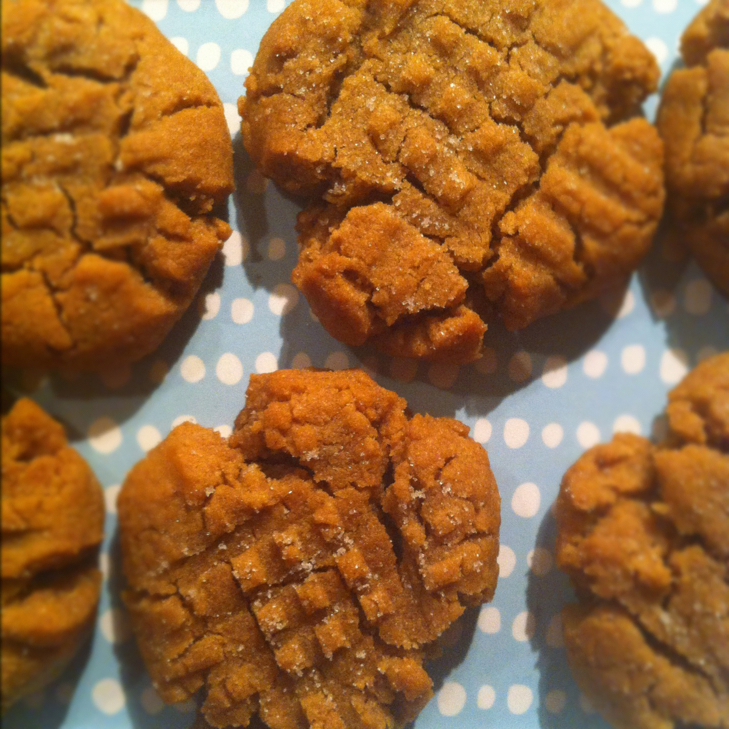 re-post: flourless peanut butter cookies
