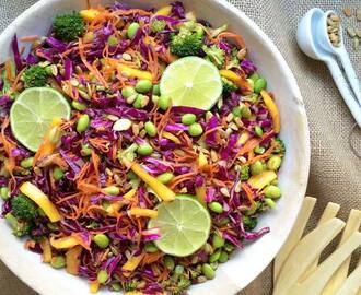 Crunchy Asian Slaw + Raw Sunbutter Ginger Dressing
