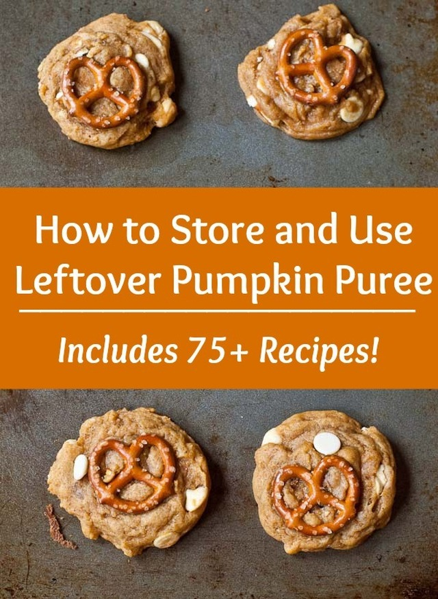 How to Store and Use Leftover Pumpkin Puree (75+ Recipes!)