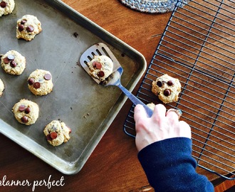 low carb & gluten free chocolate chip cookies