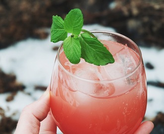 Comment on how to make shrubs {aka drinking vinegars} | 3 refreshing recipes by Jayme Henderson
