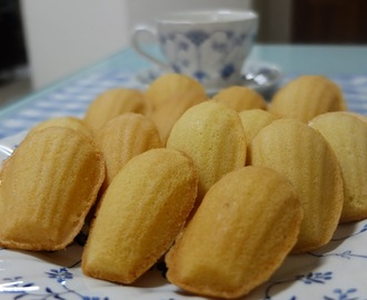 Madeleines (玛德琳)