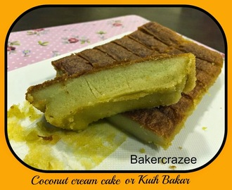 椰浆蛋糕~~Coconut cream cake or Kuih Bakar