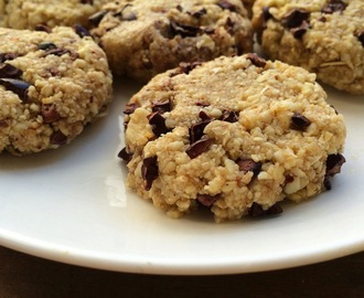 Raw Vegan Chocolate Chip Cookies (Gluten-Free)