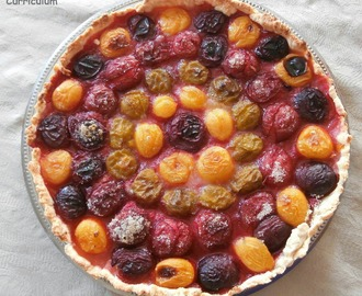 Tarte aux prunes multicolores (multicolored plum pie)