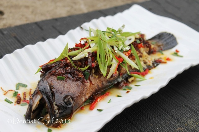 Steamed Red Grouper or Coral Trout Fish with Spicy XO Sauce