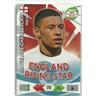 ENGLAND SUPERSTAR - ALEX OXLADE CHAMBERLAIN - ROAD TO 2014 FIFA WORLD CUP BRAZIL