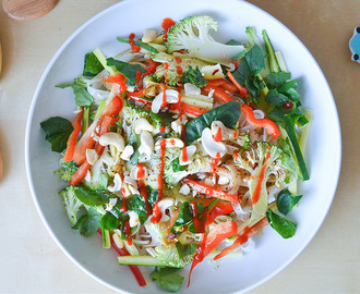 Shaved Vegetables Noodle Salad with a Soy-Ginger Dressing