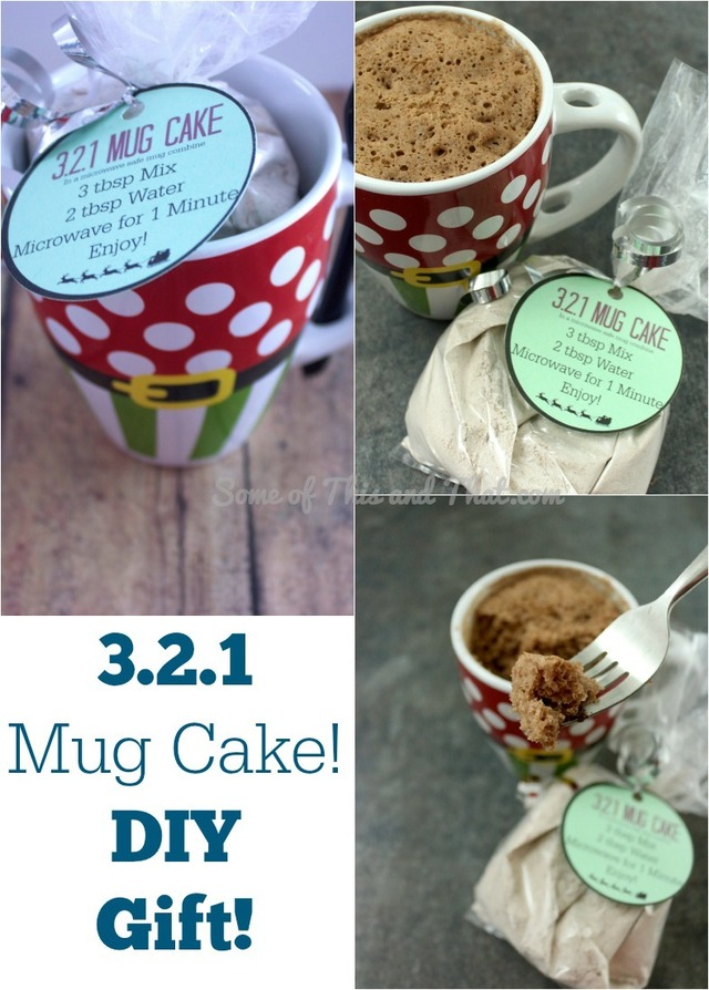321 Mug Cake! Easy and Fun DIY Gift!