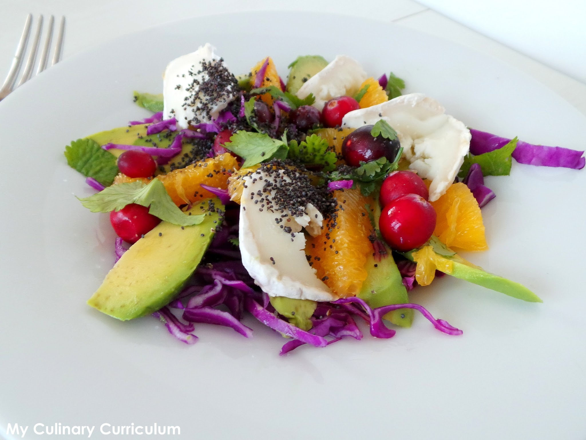 Salade de chou rouge, avocat,orange et chèvre (Red cabbage salad with avocado, orange and goat)